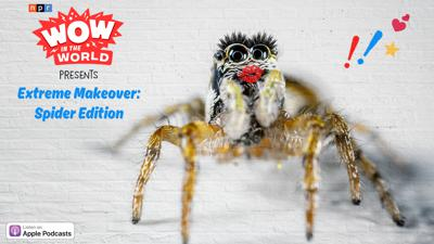 Cover art for Extreme Makeover: Spider Edition (encore)