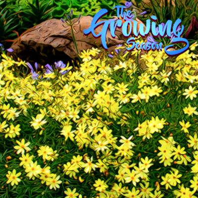 Cover art for The Growing Season, May 30, 2020 - Perennials